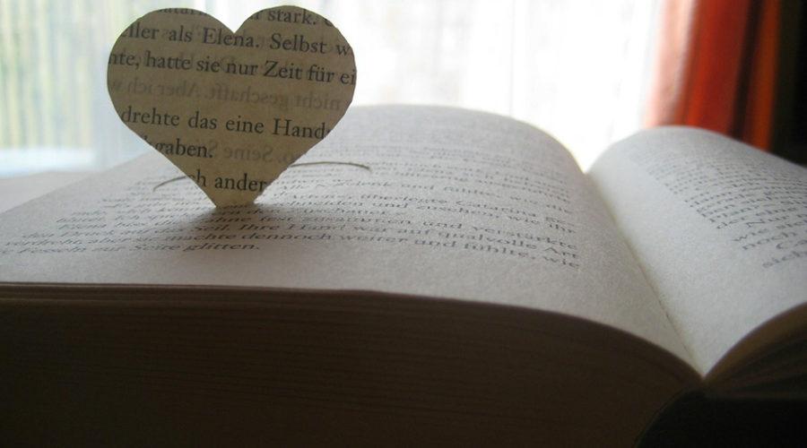 libro-di-nicchia